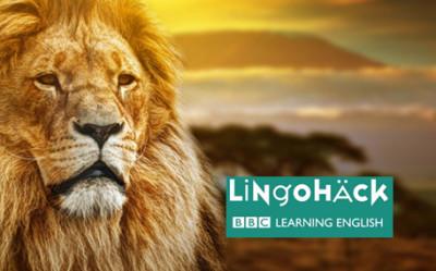 Megmérgezett oroszlánok Kenyában